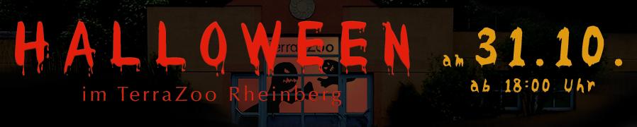 Halloween - am 31.10.2016